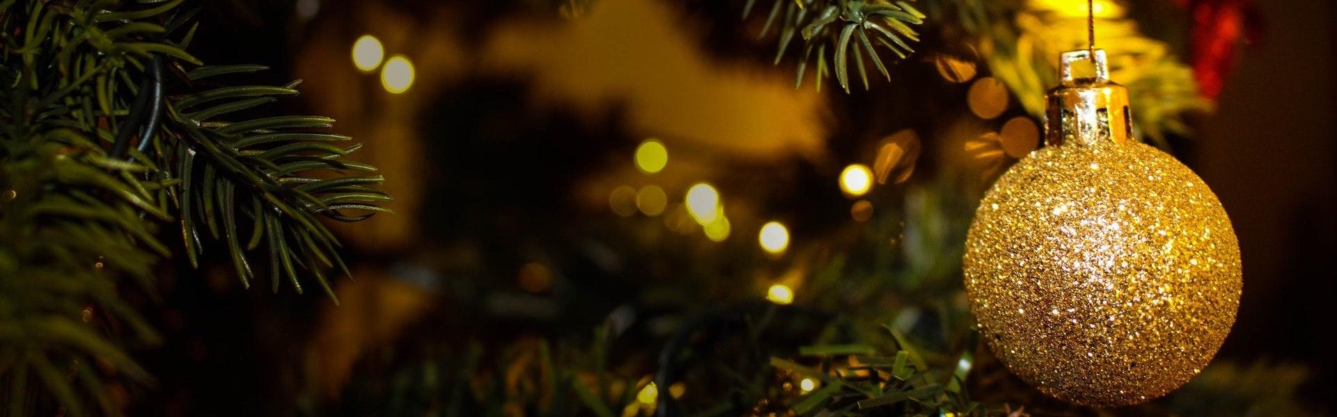 De Mooiste Kerstbomen Van Wassenaar Wassenaarse Kerstbomen Service